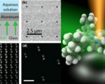 Researchers can now track individual molecules in 3d with incredible nanoscale precision