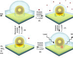 Smart sensor made of gold nanoparticles can detect single molecules in various chemicals