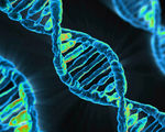 Human gene editing summit concludes careful research and proper oversight needed irresponsible to edit human embryos  etc.