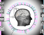 Brain signals decoded real time 96 percent accuracy implanted electrodes humans brains