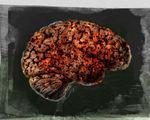 Video nova discusses researchers can implant false memories delete bad ones