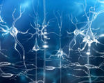Video researchers brain stimulation enable accelerated learning