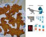 Researchers augment genetics chicken grow dinosaur lower leg %281%29