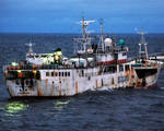 Boats unique automatic identifier combat illegal fishing
