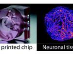 3d printed microfludic device hydrogel spheres enhances cell encapsulation technology