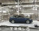 Tesla biohazard bubble defense mode