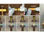 Durability future wearables advances flexible self healing electronic material