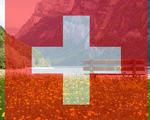 Swiss citizens universal basic income switzerland