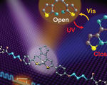 Room temperature single molecule switch lasts over year