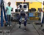 Durus robot walking gait humans