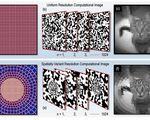 Single pixel camera mimicked human vision machine vision algorithms
