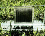 Artificial photosynthetic systems sustainable energy generation storage