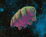 Scientists look to tardigrades to help protect future space faring humans from radiation