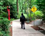 Microsoft research dreamwalker virtual reality