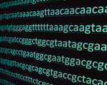New crispr tool has potential to correct most disease causing dna glitches