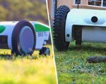 Beetl robotics dog poop cleaner robot