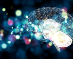 Ai developed drug goes to trial