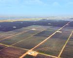 Chinas largest solar plus storage project